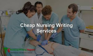 Cheapest nursing writing services online