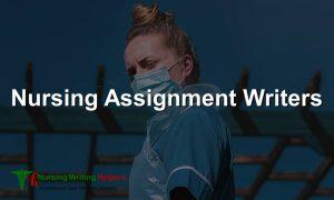 nursing assignment writers